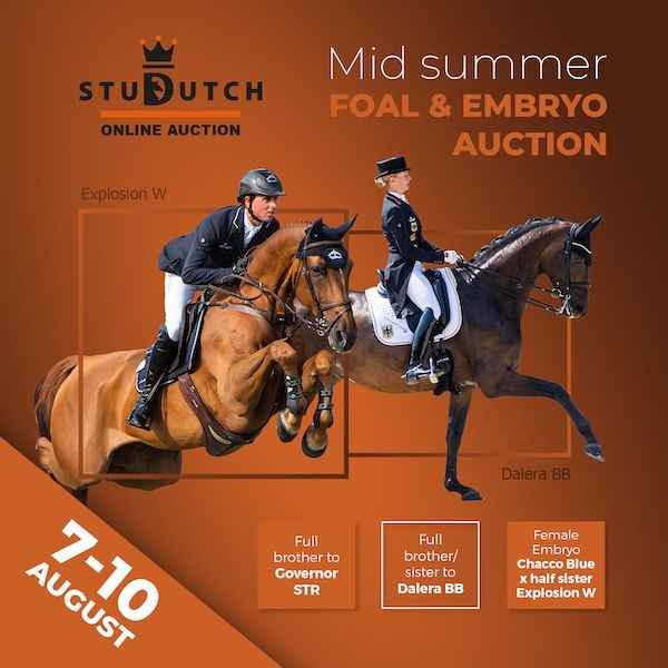 Mid Summer Foal & Embryo Auction August 2020
